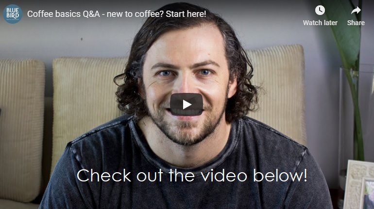 Health benefits of Coffee and a Q&A from Bluebird Coffee Roastery